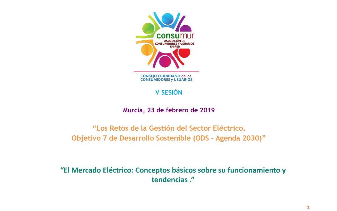 """Francisco Espín Sánchez, Director de Efficiency Services Consulting, participa en la V Sesión del Consejo Ciudadano de los Consumidores y Usuarios de la Asociación CONSUMUR para tratar: """"Los retos de la gestión del sector eléctrico. Objetivo 7 de desarrollo sostenible (ODS)""""."""
