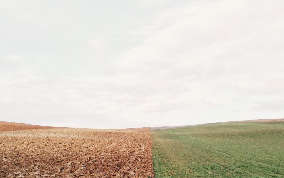 """El director de Efficiency Services Consulting, Francisco Espín, interviene el próximo 13 de marzo en un seminario organizado por el Instituto tecnológico de Murcia de la UCAM, que lleva por título: """"Cambio climático para planes y proyectos. Soluciones naturales, ecoeficientes y de economía circular"""""""