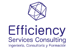 Efficiency-Services-Consulting-Formacion