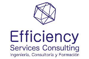 Efficiency-Services-Consulting-Formacion